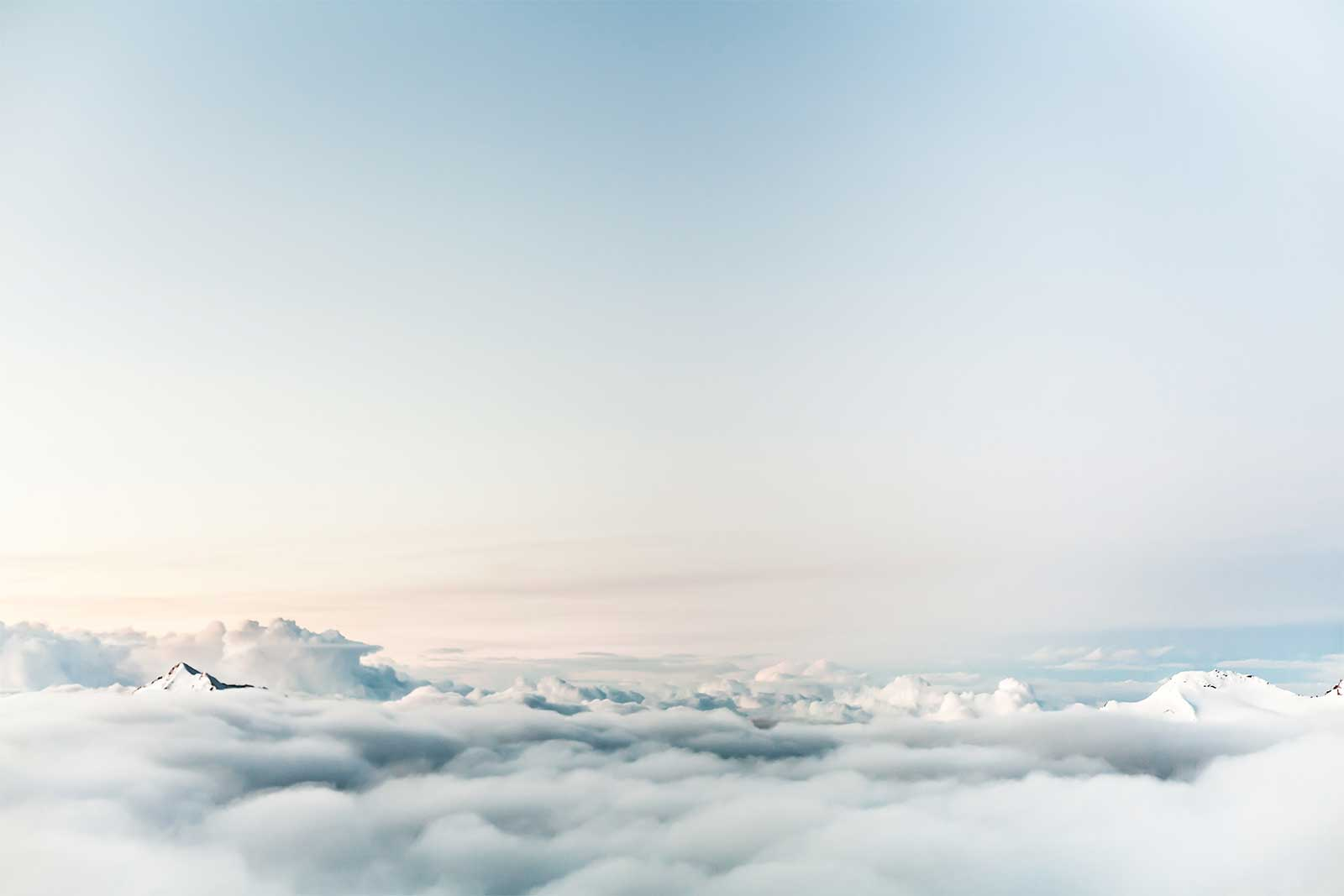 Klaar om uw bedrijf naar nieuwe hoogten?